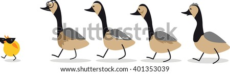 Little self-confident gosling leading a group of old geese, EPS 8 vector illustration, no transparencies - stock vector