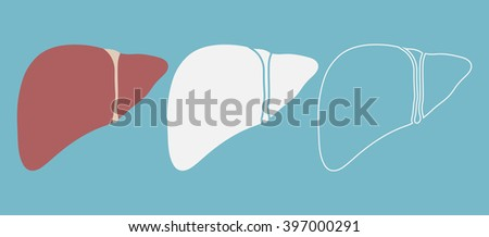 Liver icon in three different styles - stock vector