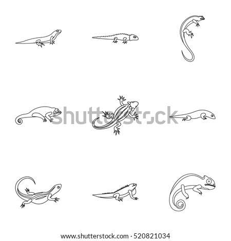 lizard icons set outline illustration of 9 lizard line vector icons for web