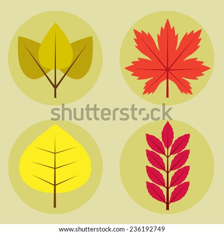 llustration set of maple, oak, birch and beech tree leaves with autumn colors.Fall leaves composed  - stock vector