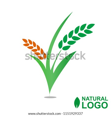 Logo Green Natural design vector EPS 10
