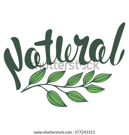 Logo Natural with leaves, natural product, organic, healthy food. Organic food badge in vector (cosmetic, food). Lettering Natural - stock vector