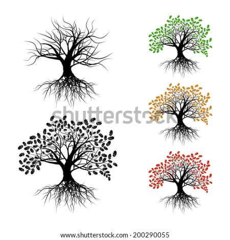 Lonely oak. Set of the isolated trees on a white background. - stock vector