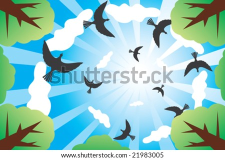 Look at sunny sky with birds and clouds from down - green forest.