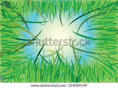 look at the sun from the grass - stock vector