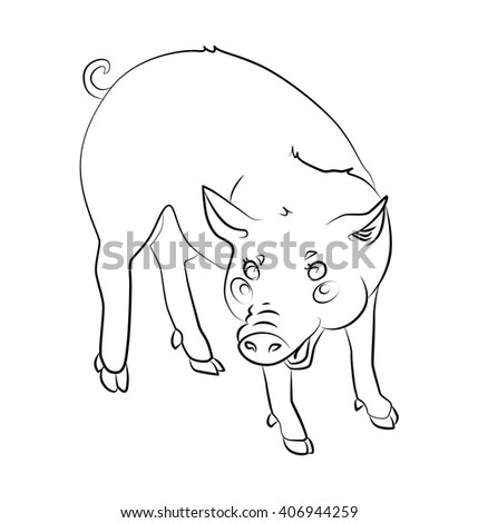 loop merry pig can be used as wallpapers for a child's coloring, agricultural illustration or illustration of one of the animals of the Chinese horoscope annual.