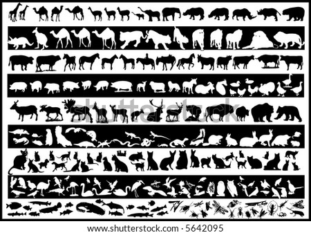 lots of animals  vectors silhouette