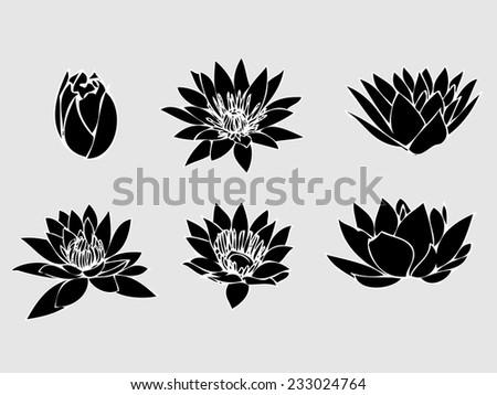 Lotus background graphics icon lotus flowers hand stock vector lotus background graphics iconlotus flowers hand drawn on white background traditional japanese ink mightylinksfo