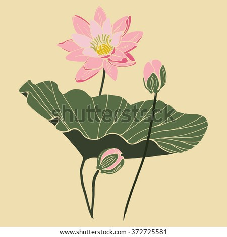 Lotus flower with leaf and two buds isolated vector design. Botanical composition on vintage paper - stock vector