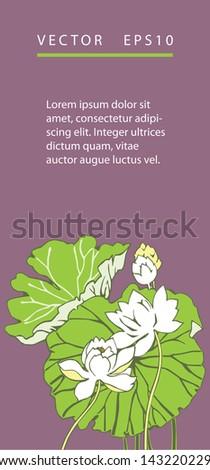 lotus flowers, background - stock vector