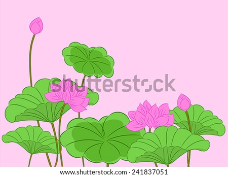Lotus Flowers Vector Illustration