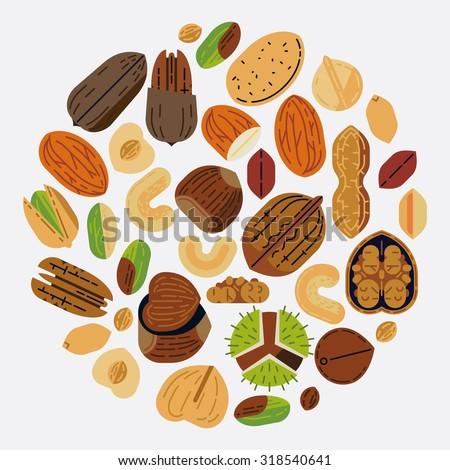 Lovely food and snack themed round composition of various nuts in trendy flat design   Circle food vector background. Ideal for diet brochures, nuts package design and web banners - stock vector