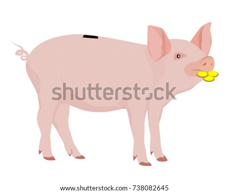 lovely piggy bang vector design