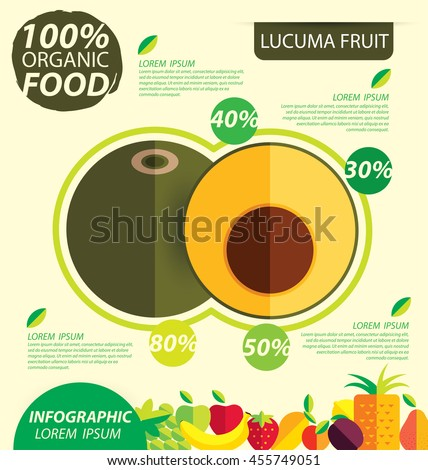 Lucuma. Infographic template. vector illustration.