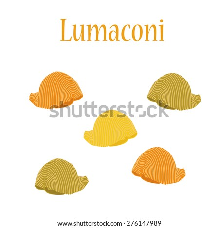 Lumaconi pasta vector isolated, macaroni icon, pasta collection - stock vector
