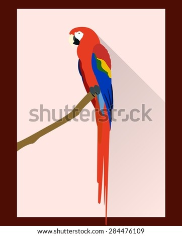 Macaw parrot in flat style - vector illustration - stock vector