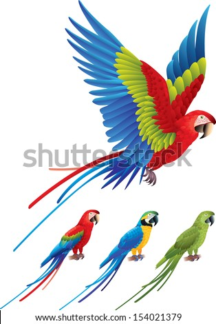 Macaw parrot spread wings and tree colorful sitting Aras photo realistic vector - stock vector