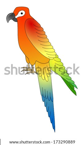 Macaw parrot vector, vector art image illustration, eps10, isolated on white background - stock vector