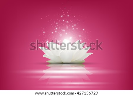 Magic White Lotus flower on pink background.Vector - stock vector