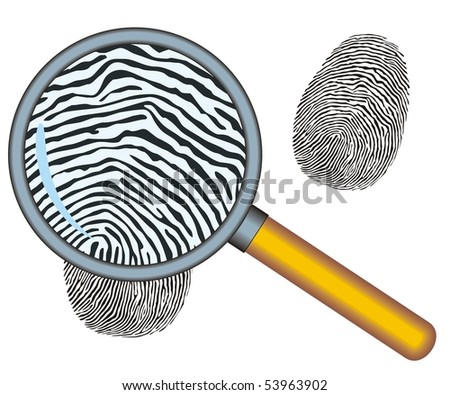 Magnifying glass with fingerprint  on the white background Vector - stock vector