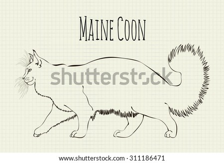 Cat Outlines Stock Images Royalty Free Images Amp Vectors
