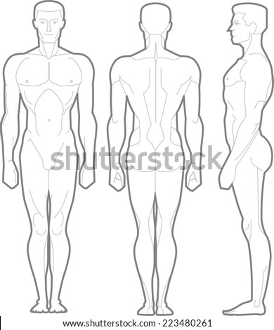 Male Body Standing Anatomical Figure, vector illustration cartoon. - stock vector