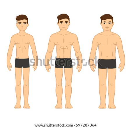 Male Body Types Diagram Ectomorph Skinny Stock Vector Royalty Free