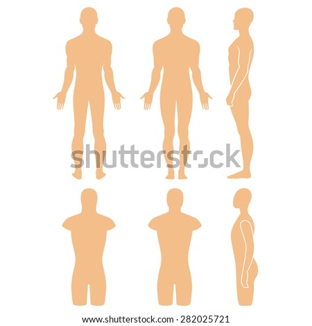 Male mannequin outlined silhouette torso (front, back, side view). Vector illustration isolated on white background. You can use this image for fashion design and etc. - stock vector