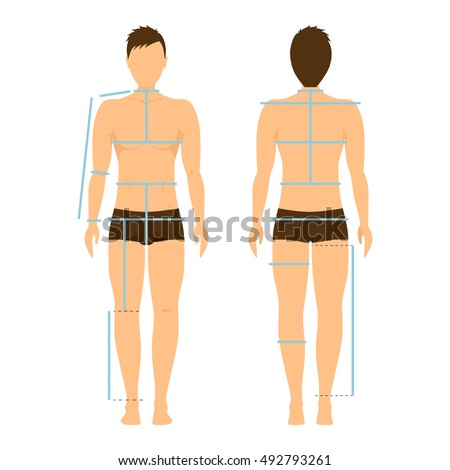 Standing Front Female Diagram Diy Enthusiasts Wiring Diagrams