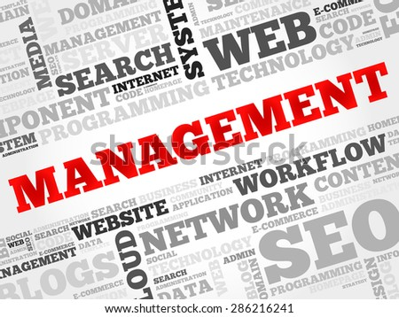 MANAGEMENT word cloud, business concept - stock vector