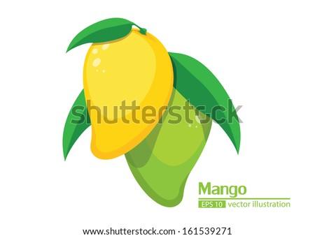 mango Vector