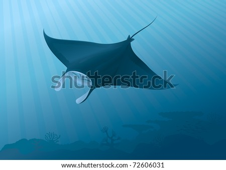 Manta Ray Fish flying underwater above the seabed. - stock vector