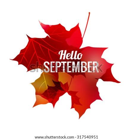 Maple Leaf Hello September Vector EPS 10 illustration. - stock vector