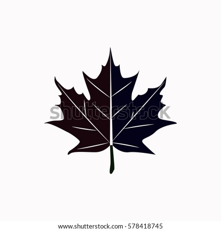 Maple Leaf Vector Stock Images, Royalty-Free Images ...