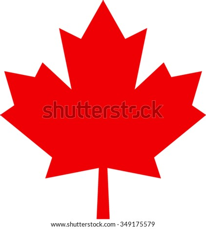 maple leaf isolated illustration - stock vector