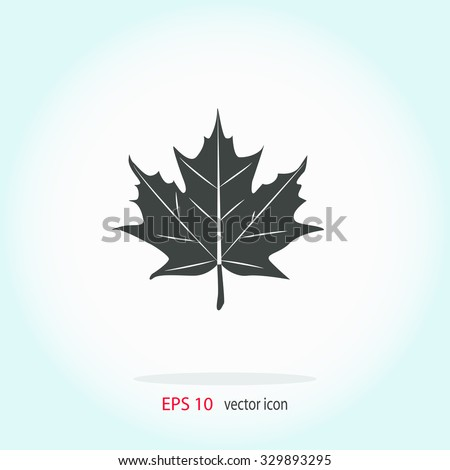 Maple Leaf Stock Photos, Images, & Pictures | Shutterstock
