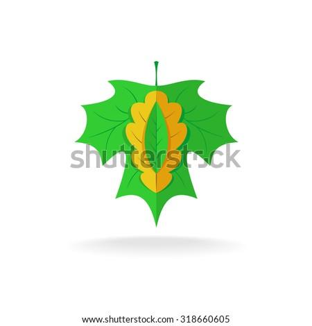 Maple, oak and ash tree leaves logo - stock vector
