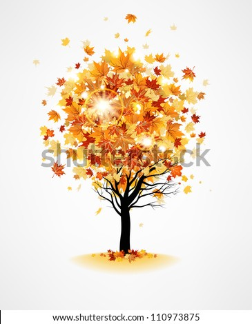 Maple tree - stock vector
