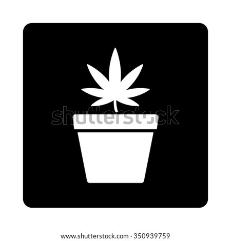 Marihuana Pot vector icon. Style is flat rounded square button, white and black colors, white background. - stock vector