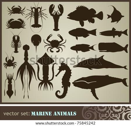Marine animals set - stock vector