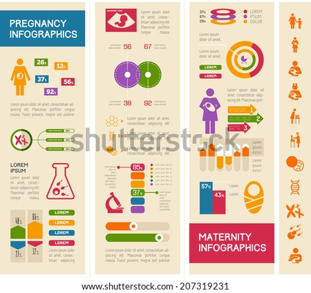 Maternity Infographic Template. - stock vector