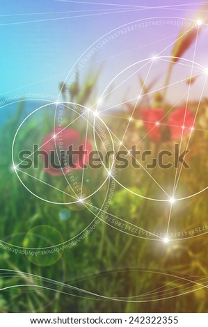 Mathematical symbols and digits in nature. The formula of nature. - stock vector