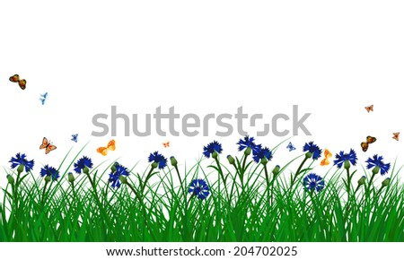 Meadow color background with butterflies and cornflowers. All objects are separated. Vector illustration. Eps 10 without transparency. - stock vector