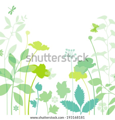 Meadow plants