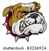 Mean looking illustration of classic British bulldog face - stock vector
