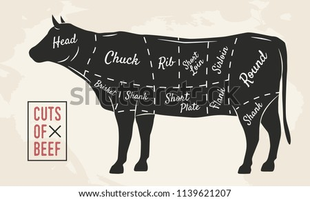 Diagram Of Beef Cuts Of Meat Electrical Wiring Diagram House