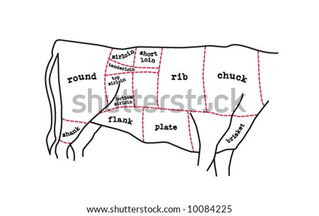 meat cuts diagram - stock vector
