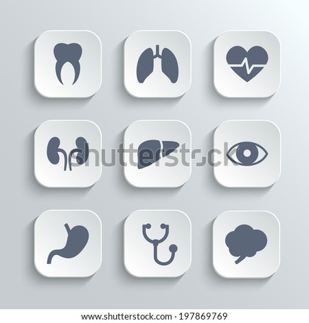 Medical icons set - vector white app buttons with heart stethoscope pulse tooth brain stomach lungs  liver kidney eye - stock vector