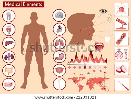 Medical info graphics. Human body with internal organs - stock vector
