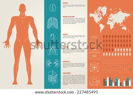 Medical Infographic set with organs , charts and other elements - stock vector